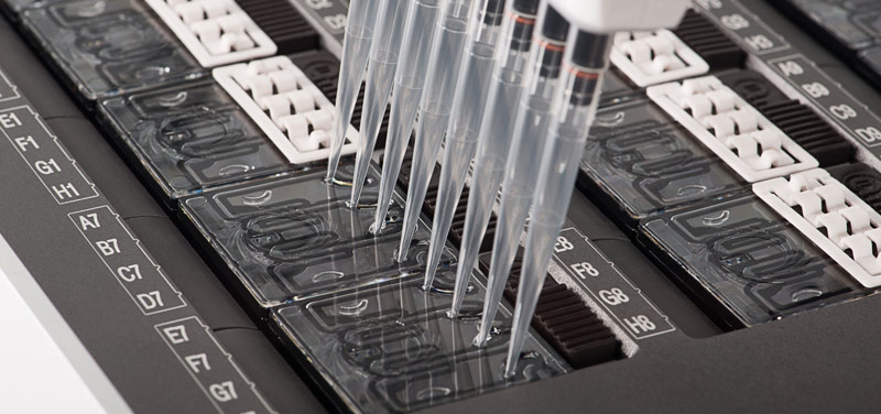 Samples being applied to a PromethION flow cell