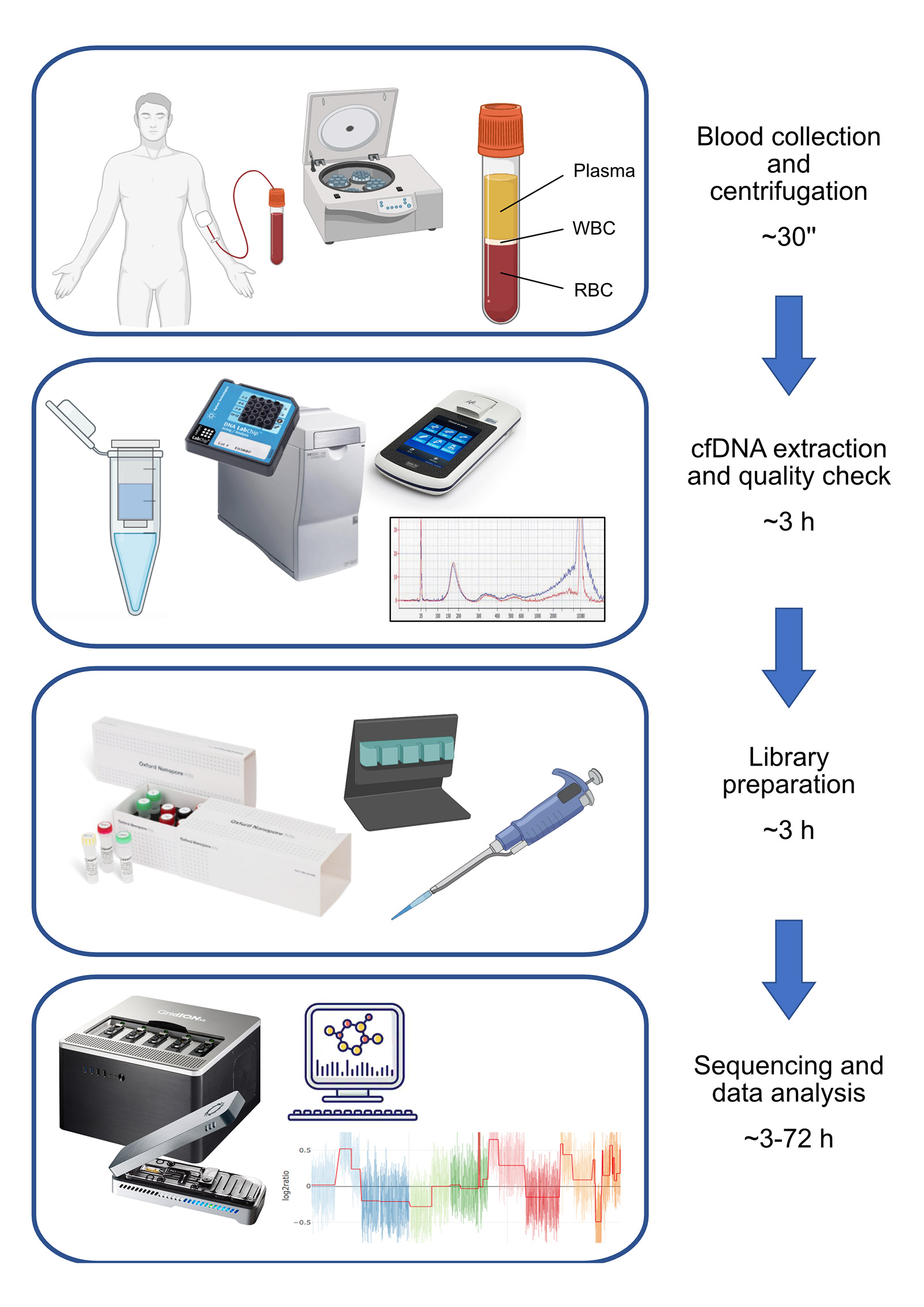 Workflow overview from blood collection to bioinformatic analysis