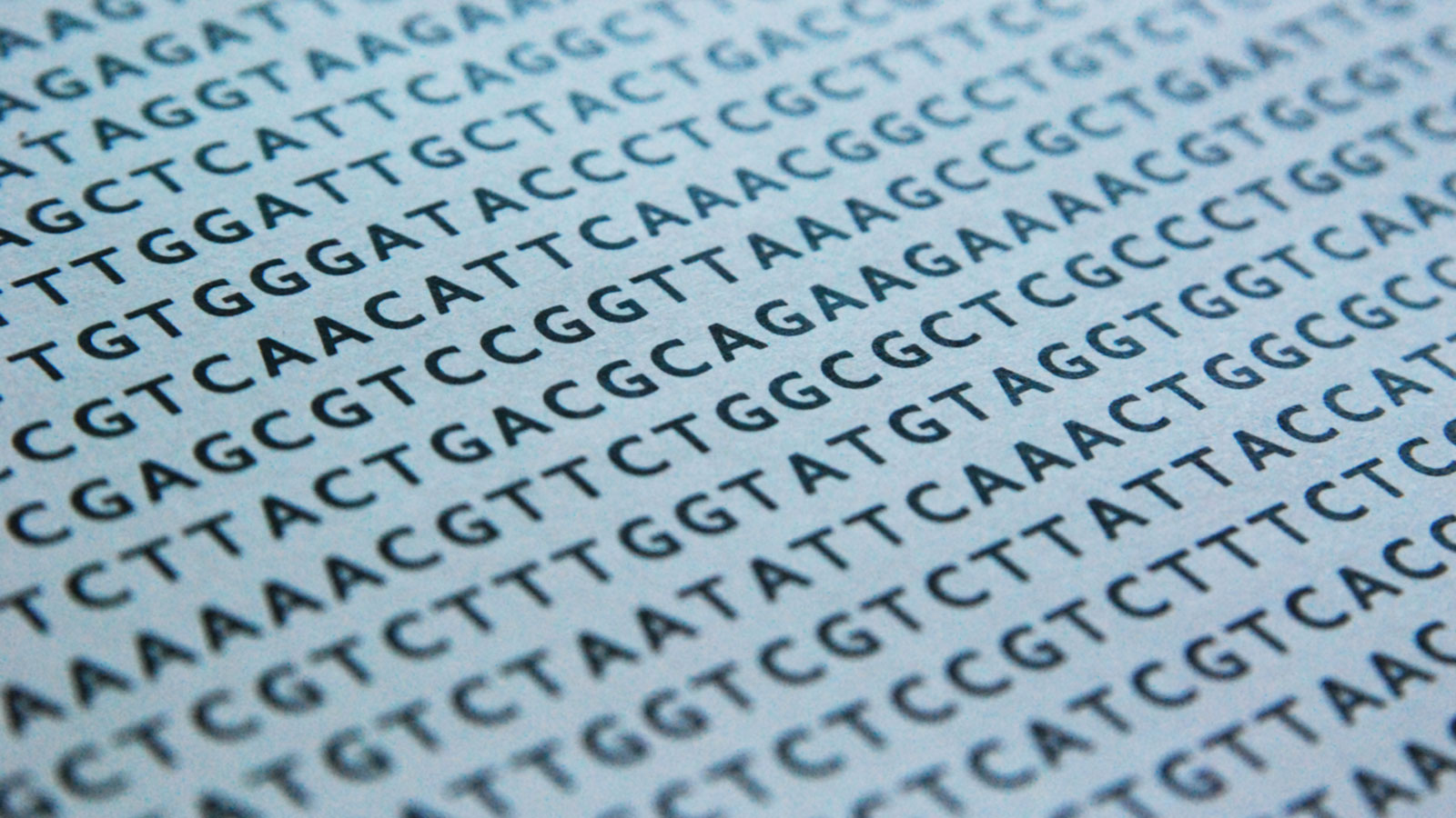 lines of DNA code in black text on a white page